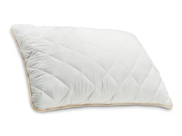 Klasični jastuk Eucalyptus